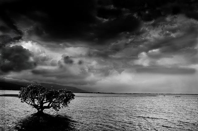 (Mirza Zahidul Alam Shawon / Flickr)