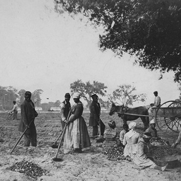 Slaves shown working in the sweet potato fields on the Hopkinson plantation, located on Edisto Island, SC.