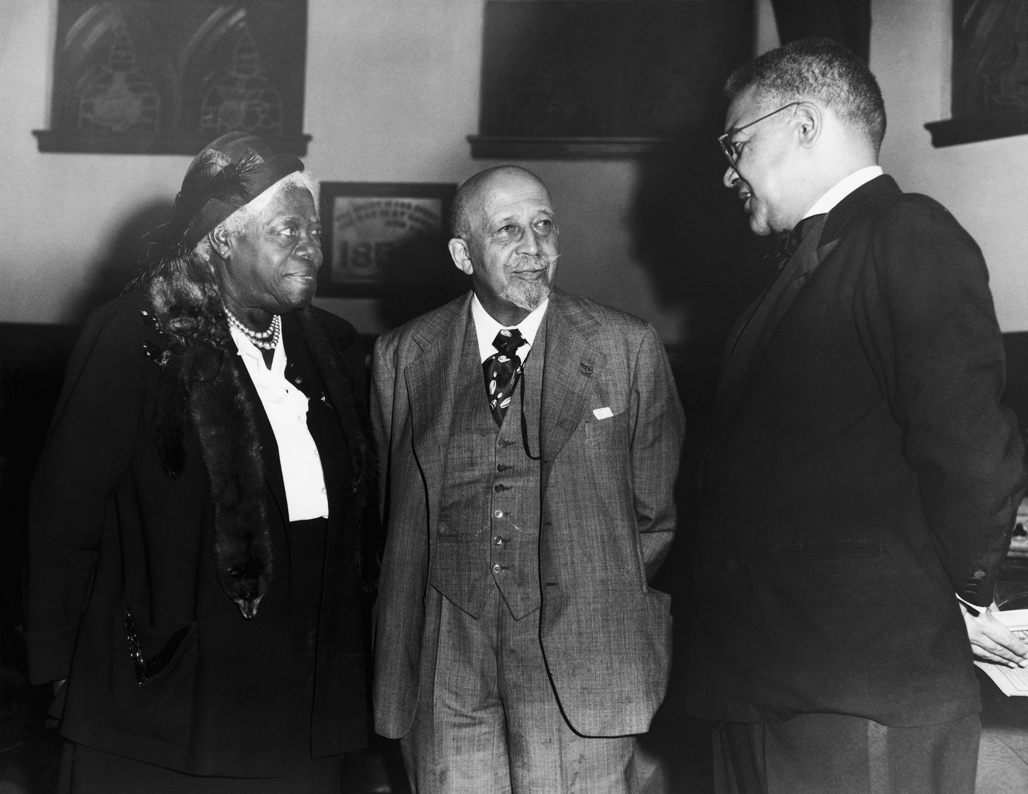web du bois believed that african american should