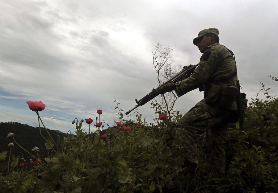 The Official Narrative About Mexico's Drug War Is All Wrong
